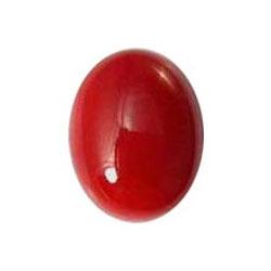 Natural Japnees Italian Red Coral Gemstone