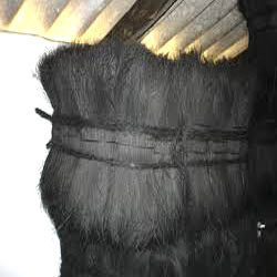 Black Dyed Bristle Coir Fiber