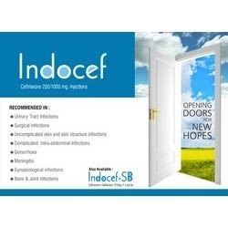 Indocef