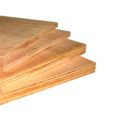 Neem Gold Ply And Board