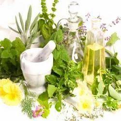 Medicinal Herbs Powder