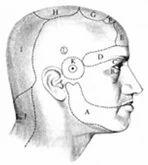 Headache Treatment Services