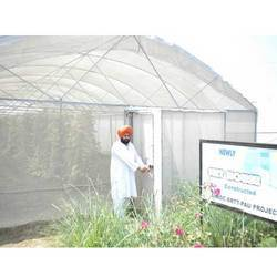 Organic Net House Vegetables