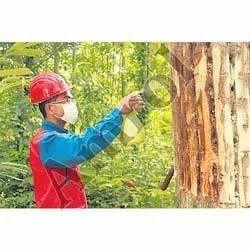 Tree Spray Oil Soluble