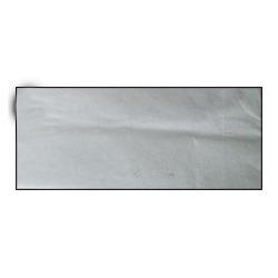 Biodegradable Paper Bag