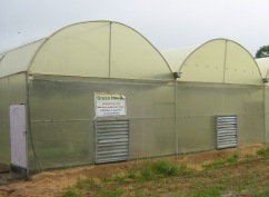 Fan Pad Greenhouse