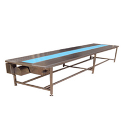 Tablet Section-Packing Conveyor Belt