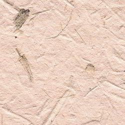 Natural Bagasse Handmade Papers