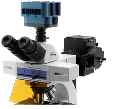 Cooled CCD Camera for Fluorescence Imaging