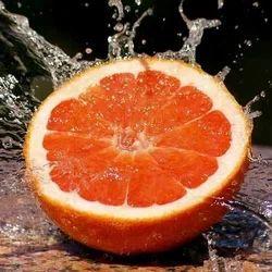 SP. Orange