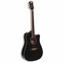 GB&A AG 110 Guitar