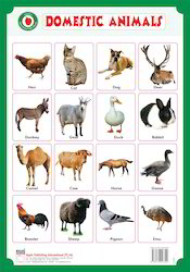 Domestic Animal Books