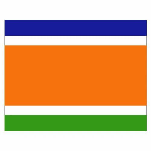 Maharashtra Nav Nirman Sena Flags