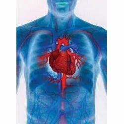 Cardiovascular+Drug