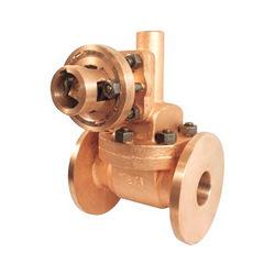 Bottom blow down valve