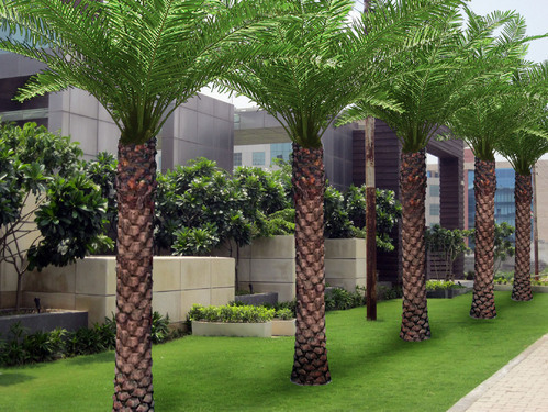 School landscape designs in new delhi vasant kunj by for School garden designs