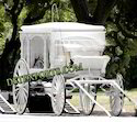 White Covered Horse Carriage