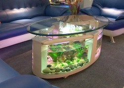 We offer high quality imported tanks (fish tanks)