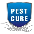 Pest Cure Incorporation