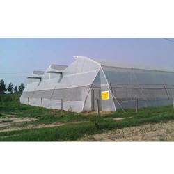 Top Ventilated Green House