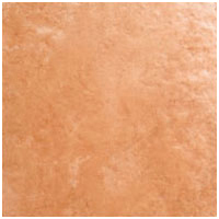 Ellora Brown Wall Tiles