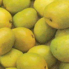Juicy Banganappalli Mango