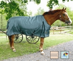 Winter Rug (Medium Weight Turnout Blanket)