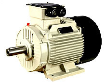 INDUCTION MOTORS - INDUS