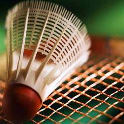 Badminton Strings