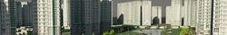Real Estate Construction Service