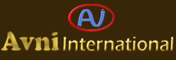 Avni International
