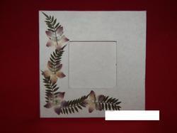 Dried Flower Photo Frames
