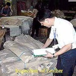 Leather Skin Inspection