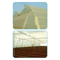 Natural Ventilated Greenhouses