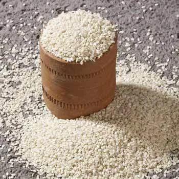 Sesame Seeds-AutoDry
