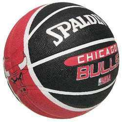 Spalding Bulls Basket Ball