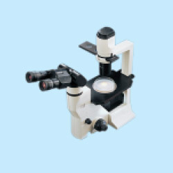 Inverted Tissue Labomed Microscopes