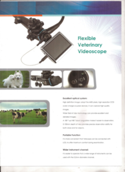 Veterinary Endoscopevideo