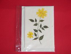 Greeting Cards Made from Dried Flowers