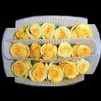 Gold Strike Rose Flower