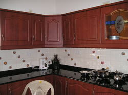 Stylish Modular Kitchen India
