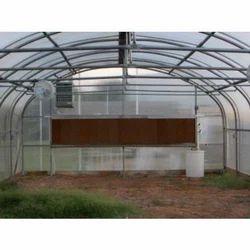 Fan & Pad Greenhouses