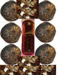 Musk Perfume Oils