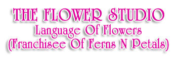 THE FLOWER STUDIO Language Of Flowers (Franchisee Of Ferns N Petals)