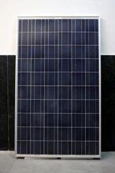 75W Solar  PV Module