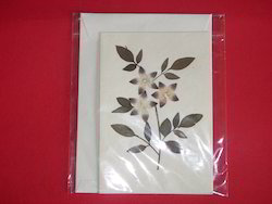 Dried Flower Greeting Cards In Various Sizes
