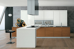 Stylish and Trendy Modular Kitchen