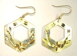 Earrings ER1022