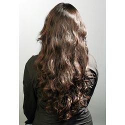 Human Hair Model