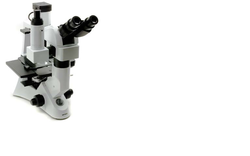 Ergonomic Inverted Microscope Optika Italy